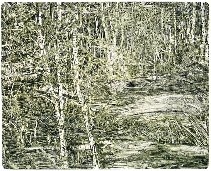 dense-forest-cropped-14x18